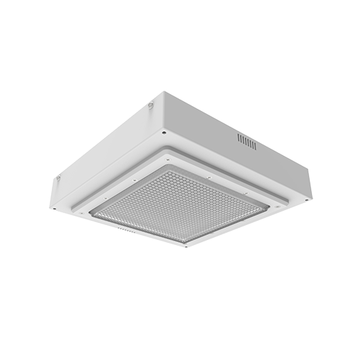 D533 LED Canopy Light Isometric View